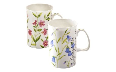 Sada 2 hrnků z porcelánu Price & Kensington Botanical, 300 ml