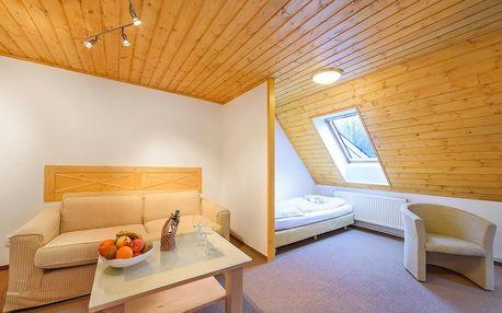 Špindlerův Mlýn pro dva na 3-5 dní + polopenze a neom. sauna