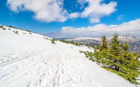 Krkonoše u ski areálu s privátním wellness