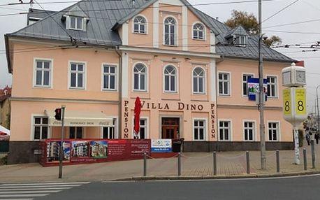 Pobyt v hotelu Villa Dino na 3 až 8 dní pro dva s polopenzí