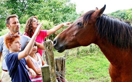 Rodinný pobyt na koňské farmě s termály