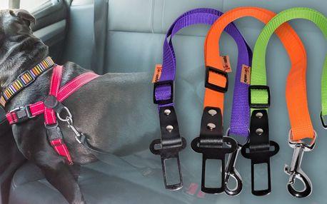 Zádržný pás do auta pro psy: výběr ze 6 barev