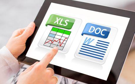 Online kurzy: naučte se MS Excel a MS Word