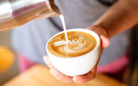 5hod. baristický kurz: základy přípravy kávy