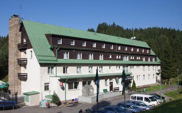 Hotel Engadin