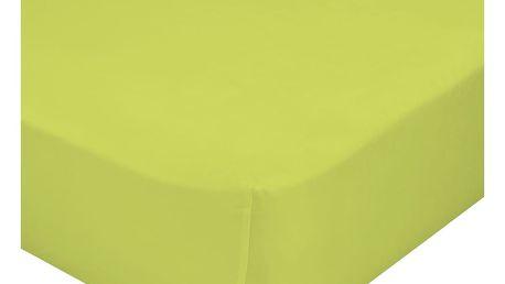 Zelené elastické prostěradlo z čisté bavlny Happynois, 90x200cm