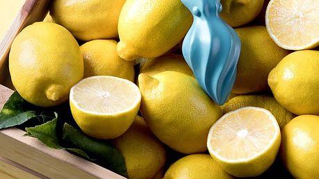 Lis na citrusy sépie Octo
