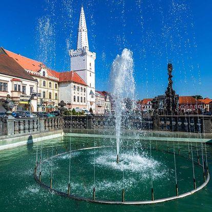 Penzion Relax *** v Kadani s privátním wellness a polopenzí
