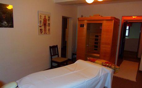 3 dny pro dva na Šumavě + polopenze, sauna