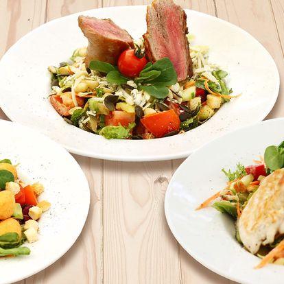 Salát dle výběru ze 3 druhů i domácí limonáda