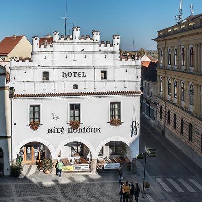 Třeboň: Hotel Bílý Koníček