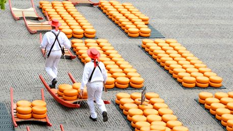 Holandsko, Alkmaar se sýrovým trhem, Amsterdamu a Zaanse Schans