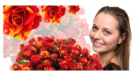 Prémiové trsové růže Fire Flash s min. 4 květy
