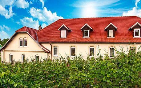 3 až 5denní vinařský pobyt se vstupenkami na Vinobus v hotelu Schaller na Znojemsku