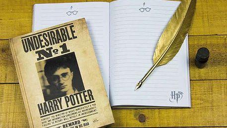 Zápisník pro správné kouzelníky 3D Harry Potter