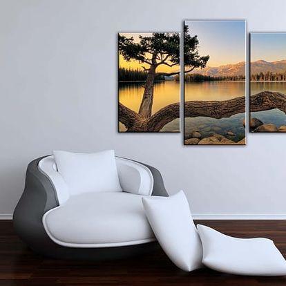 Originální 3dílný obraz s 3D efektem na malířském plátně