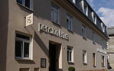 Olomouc: Pension Křivá