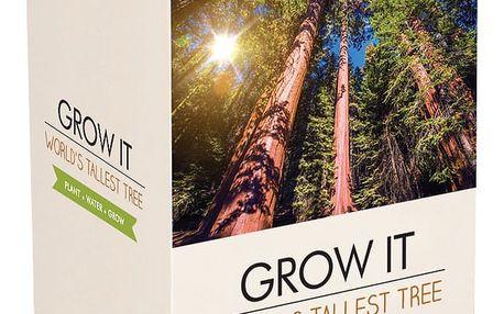 Pěstitelský set se semínky sekvoje Gift Republic Sequoia The World Tallest Tree