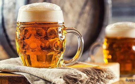 2x půllitr piva: polotmavý Řepiš i ležák Harcíř