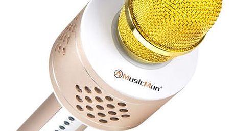 Přenosný reproduktor Technaxx BT-X35 s reproduktory a Bluetooth stříbrný/zlatý (4611)