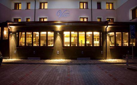 Bratislava a okolí: Hotel Viktor