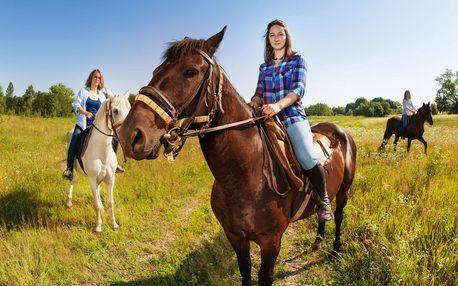 Hodina jízdy na koni: v přírodě či na parkouru