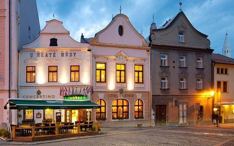 Jižní Čechy: OREA Hotel Concertino Zlatá Husa
