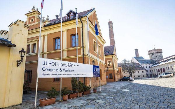 Tábor: LH Hotel Dvořák Tábor Congress & Wellness s pivními lázněmi