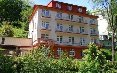 Lázeňské město Jáchymov: Pension Dalibor