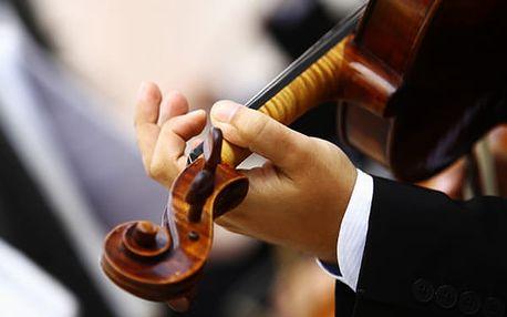 Vstupenka na Novoroční koncert Čtvero ročních období ve Smetanově síni Obecního domu.
