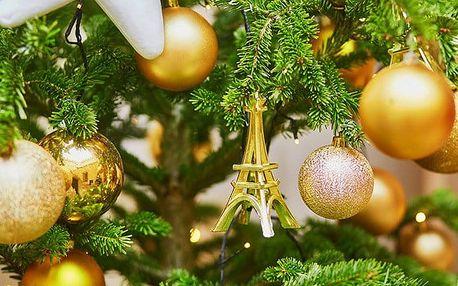 4denní zájezd pro 1 do adventní Paříže a Versailles s ubytováním v hotelu se snídaní