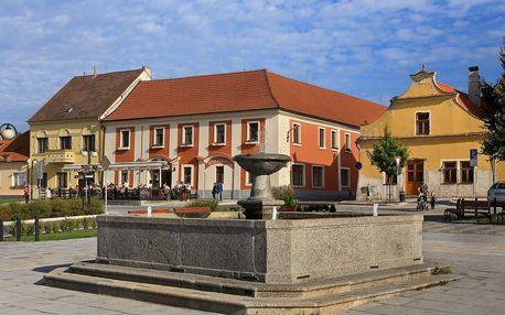 Lázně Bechyně: Hotel Panská