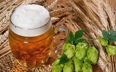 Pivní doktorát: 3hod. kurz o pivu vč. degustace