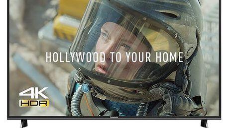 Televize Panasonic TX-49FX603E černá