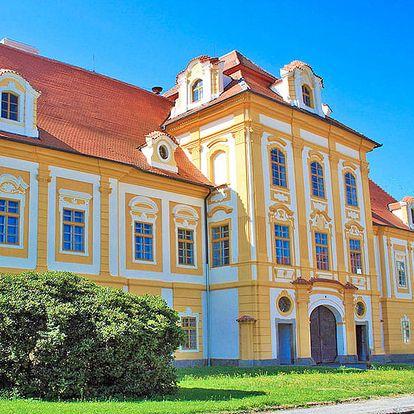 Romantické jižní Čechy v hotelu v srdci Borovan nedaleko Českých Budějovic s lahví vína a polopenzí