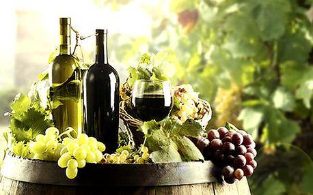 3denní vinařský pobyt pro dva a 2 děti do 6 let. Polopenze, neomezená konzumace vína a burčák.