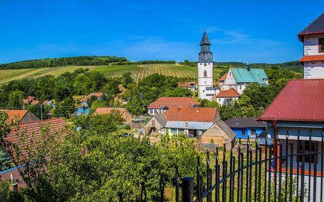 Jižní Morava s jídlem a vstupem do wellness