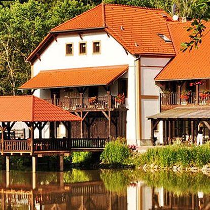 3denní pobyt pro 2 s whirlpoolem a polopenzí v penzionu Borovanský mlýn u Třeboně