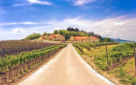 Exkluzivní vinařský pobyt s wellness