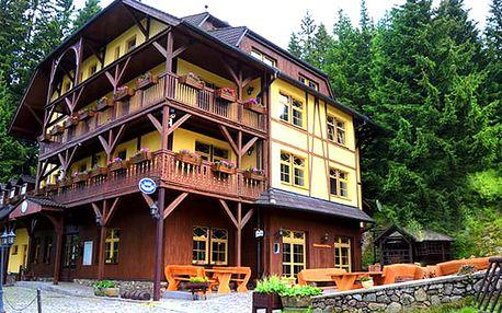 Wellness pobyt na Šumavě v hotelu Modrava, polopenze, koupel ve whirpool, půjčení kol či běžek.