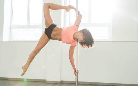 Kurzy aerial hoop a pole dance pro začátečníky