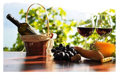 3denní vinařský pobyt pro dva možnost neomezené konzumace vína nebo burčáku s rautem.