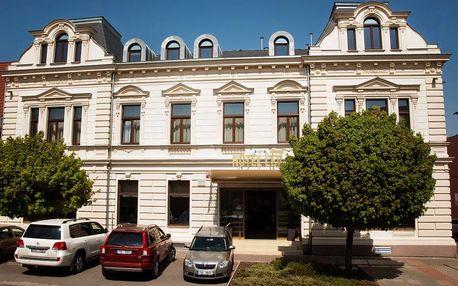 Silvestrovský pobyt v hotelu Lev