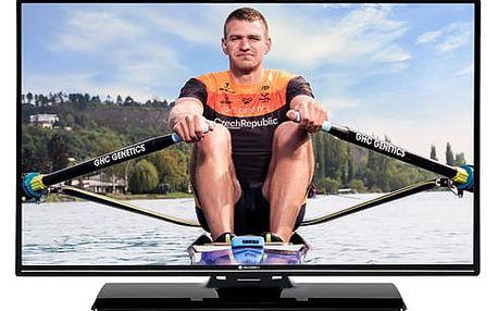 Televize GoGEN TVF 43P525T černá