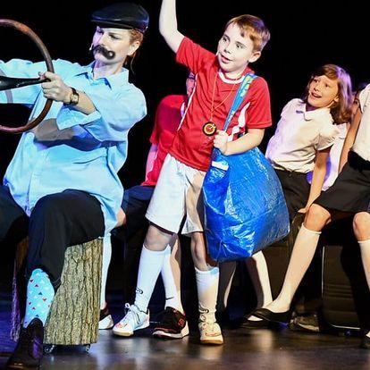 Vstupenka na dětský muzikál Pozor, padá šiška