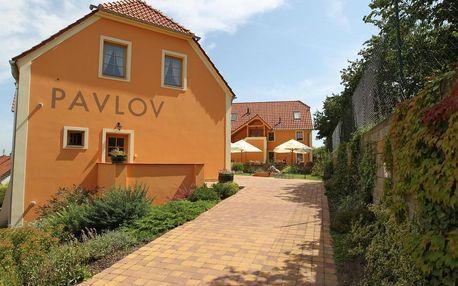 Jižní Morava: Hotel Pavlov