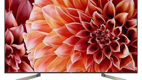 Televize Sony KD-49XF9005