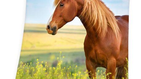 Herding Deka Horse Freedom, 130 x 160 cm