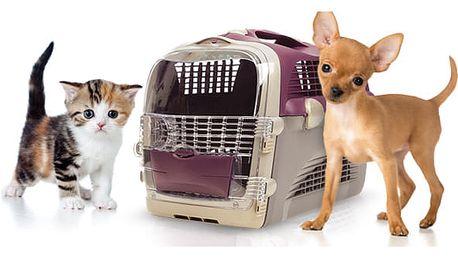 Plastová přepravka CAT IT Pet Cargo Cabrio