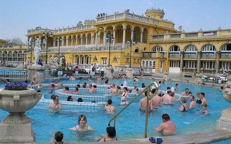 Celodenní koupání v maďarských termální lázních včetně vstupu